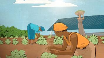 My Lightbulb Moment: Using Solar Energy to Feed a Village