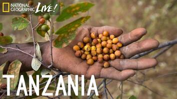 We Are What We Eat: Tanzania