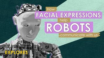 How facial expressions help robots communicate with us