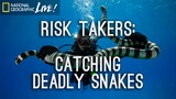 Risk Takers: Catching Deadly Snakes