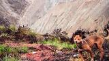 Ancient Wild Dog Population Feared Extinct, Now Captured on Camera