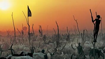 NG Live!: Dinka: Legendary Cattle Keepers of Sudan