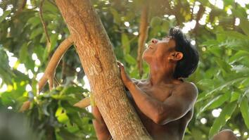 How Five Communities Are Protecting the World's Forests