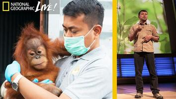 Saving Orangutans in Sumatra's Disappearing Rain Forests