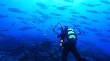 Announcement: Chile Creates Enormous Ocean Preserve