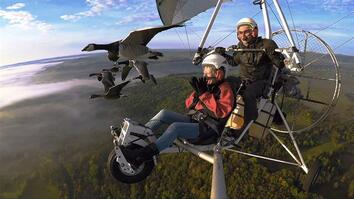 Soar Alongside Migrating Birds—and the Man Who Flies With Them