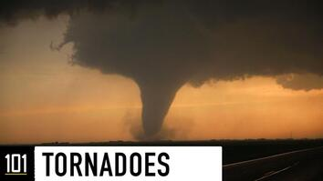 Tornadoes 101