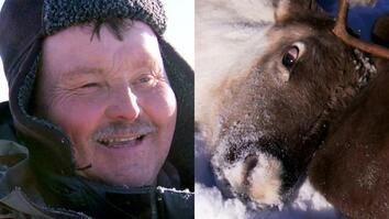 Man Castrates Reindeer With His Teeth