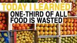 TIL: We Waste One-Third of Food Worldwide