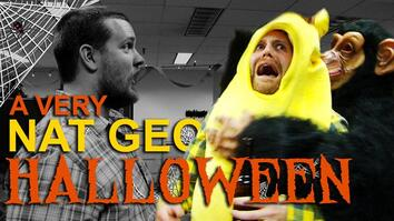 Happy Halloween From Nat Geo