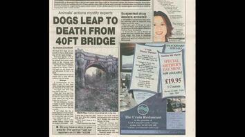 Dog Suicide
