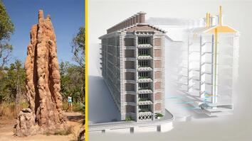 See how termites inspired a building that can cool itself