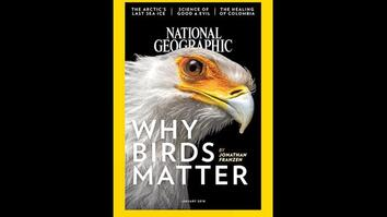See 130 Years of National Geographic Covers in Under 2 Minutes