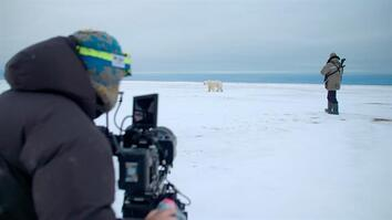 Behind the scenes: Meet a polar bear tracker