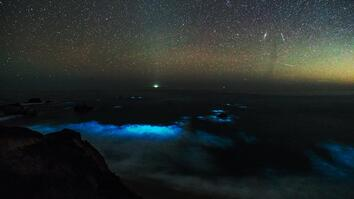 See a Glowing Plankton Bloom in California's Big Sur