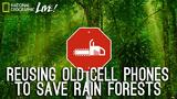 Reusing Old Cell Phones to Save Rain Forests