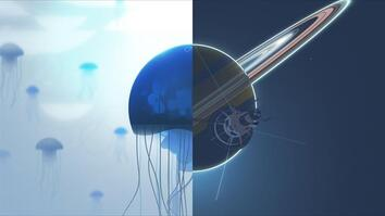 Animation Explores the Beautiful Circles of Our World