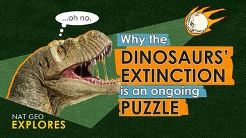 Why the dinosaurs' extinction is an ongoing puzzle