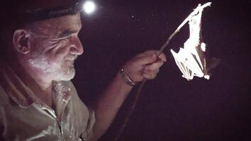 Follow Mexico's 'Bat Man' on a Search for Vampire Bats
