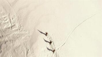 Zero to 60: Snow Angels