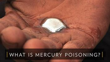 What is Mercury Poisoning?