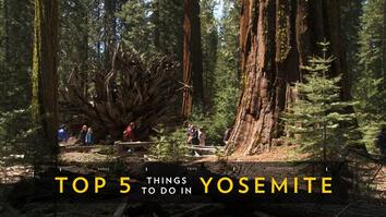Top 5 Must-See Attractions in Yosemite