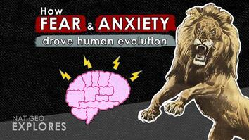 How fear and anxiety drove human evolution