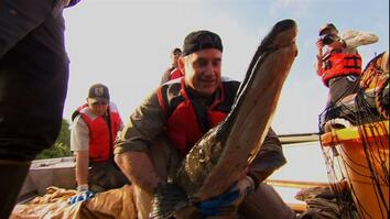 Saving the Alligator Gar