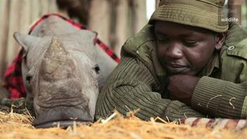 Meet the Heroes Who Protect the Last Northern White Rhinos in the World