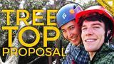 Camera Trap Captures Surprise Treetop Proposal