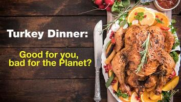 Turkey Dinner: Good For You, Bad For the Planet?