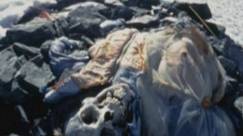 Human Ambition: Climbing Everest
