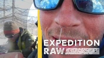 Wolverine Research Isn't Pretty