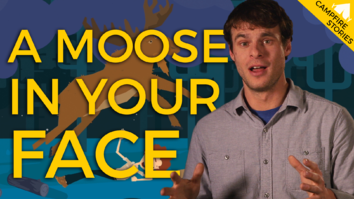 Waking Up With a Moose in Your Face