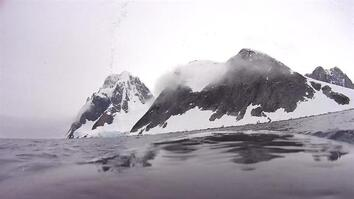 Explore the Antarctic From the Back of a Minke Whale
