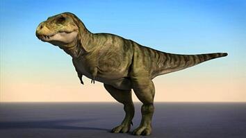 T. Rex in 3-D
