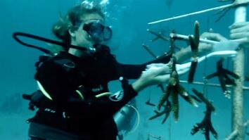 Fighting to Save Coral in the Florida Keys