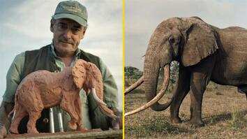 Join This Man on a Safari to Sculpt Animals in the Wild