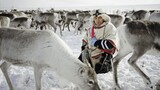 NG Live!: Erika Larsen: The Reindeer People
