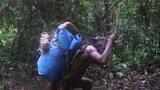 Ndoki Rain Forest
