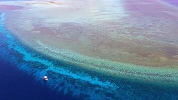 Explore One of the Most Pristine Coral Reefs in the World