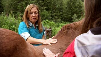 Dr. Oakley, Yukon Vet: Socks the Swayback Horse