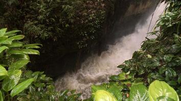 Amazon Deadly River Crossing