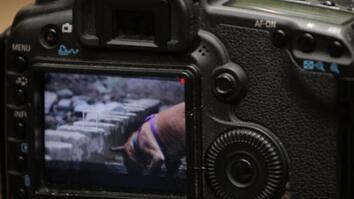 DSLR HD Video Tips: Capturing Movement
