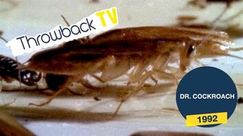 Throwback TV: Dr. Cockroach