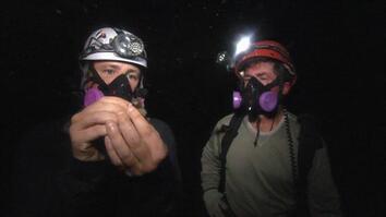 The Bat Cave!