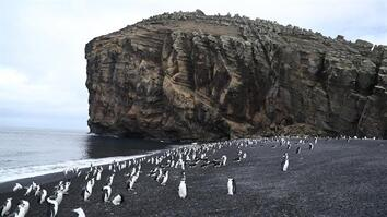 Explore Deception Island, the Active Antarctic Volcano That's Home to Penguins